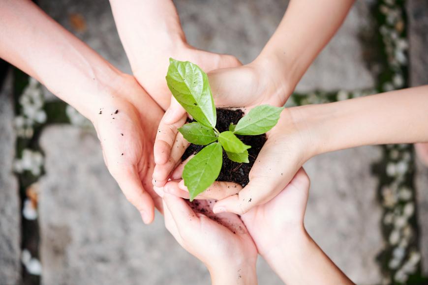 plantando_desarrollo sostenible-desarrollo sostenible definición